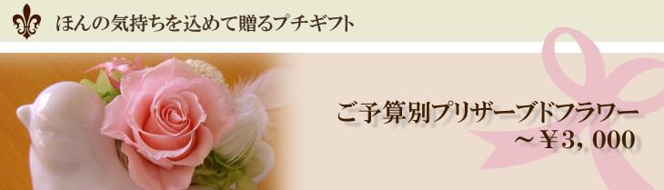 3000円のプリザーブドフラワー