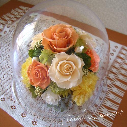 上司 恩師へ贈る誕生日プレゼント グレイス(オレンジ)